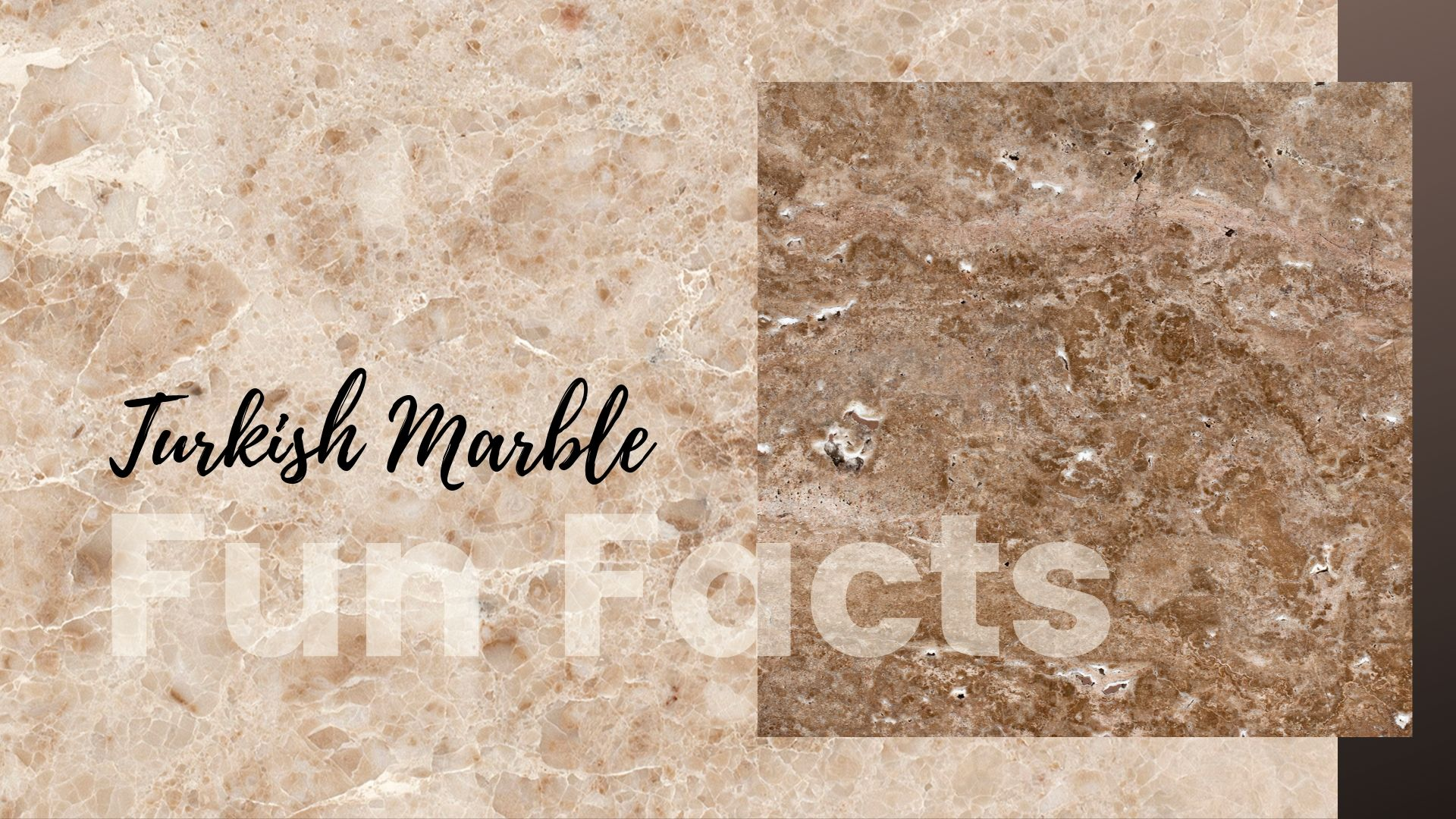 Turkish Marble Facts | Turkish Marble Company